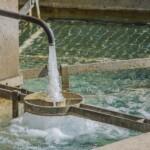 Brev til Klima- og forsyningsministeren: Manglende anvendelse af TCO i vand- og spildevandsforsyningerne